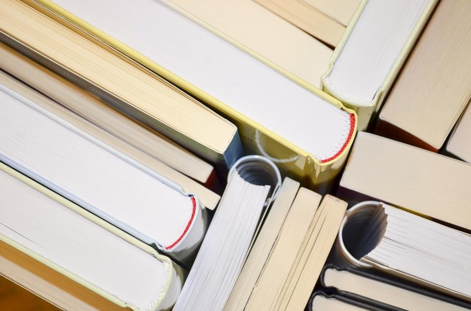 Lubyová obnoví zrušený inštitút a vypíše novú výzvu na vedu a výskum