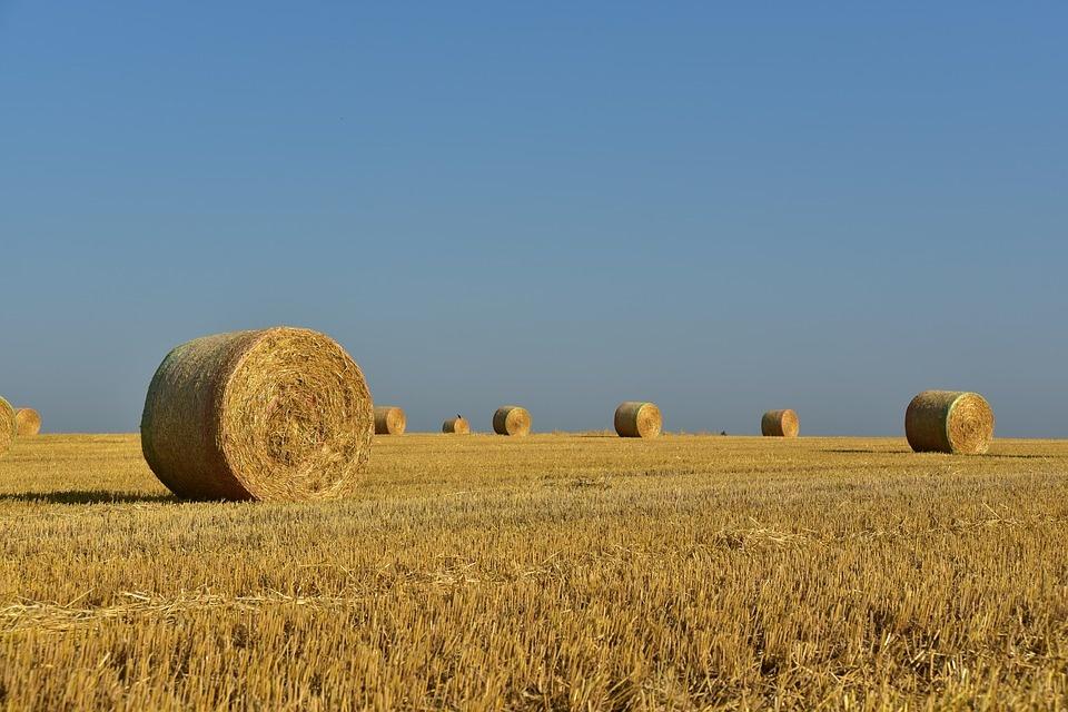 Ministerstvo chce upraviť vlastnícke vzťahy k pôde, vyhlásilo tri tendre