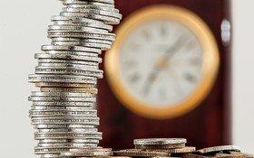 Webinar: L'ECONOMIA CIRCOLARE COME OPPORTUNITÀ DI BUSINESS