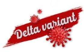 delta 29 luglio.jpg
